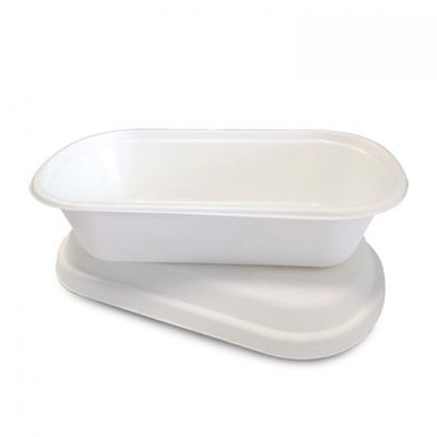 Eco To-Go Container - Medium